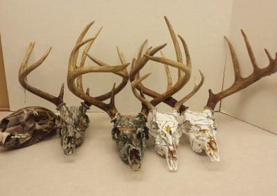 5 skulls