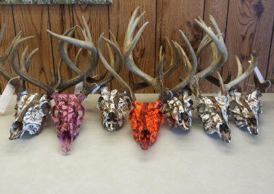 7 skulls